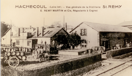 The distillery is established in Machecoul.